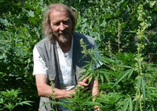 Finnish entrepreneurs cultivate 'cannabis light' with eye to export