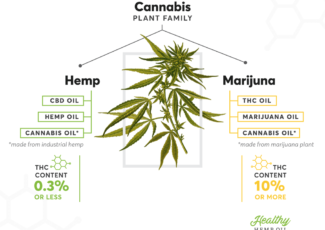 Can You (Legally) Buy THC Oil, Cannabis Oil or Marijuana Oil?