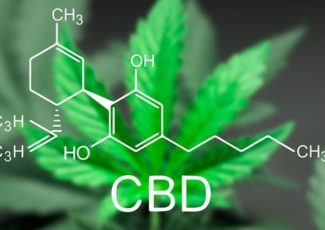Is the CBD Hype Wave Justified? We Asked Five Experts to Weigh In