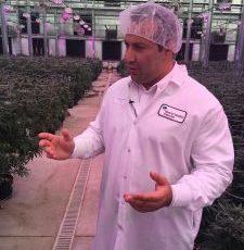 Medical Cannabis Investors Hopeful In Their Alachua County Venture