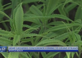 Hemp growers conference coming to the Grand Strand