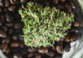 New additive to coffee: CBD oil from hemp plants?