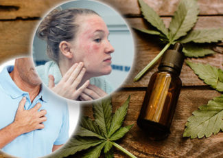 Cannabidiol oil – four health reasons you should be taking CBD oil everyday – Express