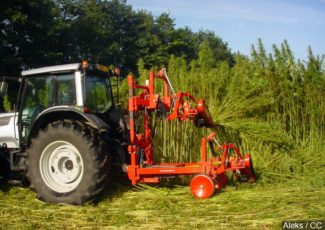 With OK from Congress, US hemp market set to boom – 1011now
