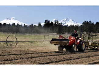 With OK from Congress, US hemp market set to boom – myndnow.com