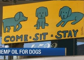 "Dog store ""cut off"" for selling CBD oil – WSMV Nashville"