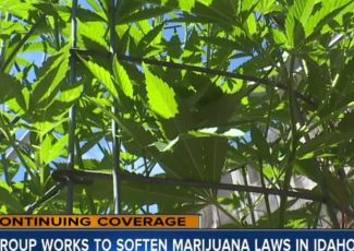 Group works to soften marijuana laws in Idaho – 6 On Your Side