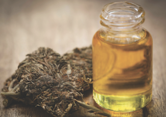 Review Site Names Best CBD Oils for Pets – American Veterinarian
