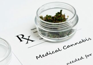 Endorsing Cannabis as an Opioid Substitute 'Irresponsible' – Medscape