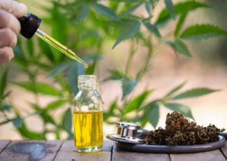 CBD Oil Is Everywhere, But Is It Really Safe and Healthy? – TIME