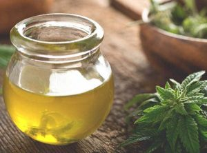 CBD Oil Market Size Estimated to Observe Significant Growth by 2025 – TheTokenClock – TheTokenClock