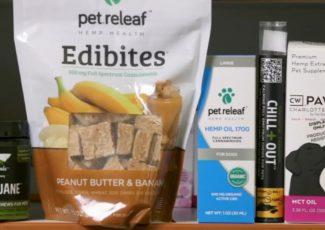 Consumer Reports: Should your pet try CBD? – WLS-TV