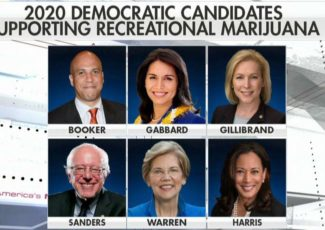 Democrats pushing to legalize recreational use of marijuana don't understand its true effects – Fox News