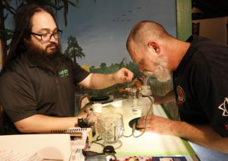 'Gainesville Green': Lore of city's potent pot replaced by new reality – Gainesville Sun