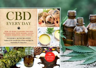 How to extract CBD oil in your home kitchen – Salon