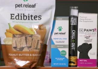 Pet owners turn to CBD for ailments – KSAT 12