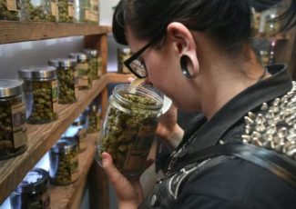 Police issue warning after seizing $1.7 million of pot edibles – Digital Journal
