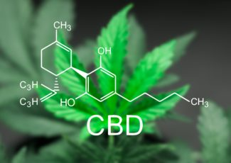 Scientist hopes CBD product will help kids with intellectual disabilities – Q13 News Seattle