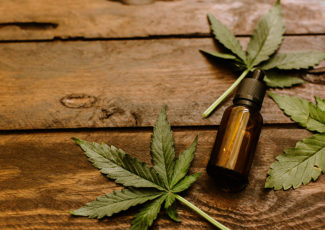 The Differences Between Hemp Seed Oil and Hemp CBD Oil – Civilized