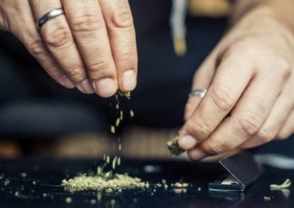 Toronto is getting the first legal cannabis consumption patio – Straight.com