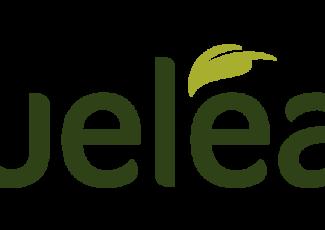 True Leaf Unveils New Brand Identity and Product Innovations – GlobeNewswire
