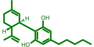 12 CBD oil benefits you should know about – TheCannabisRadar
