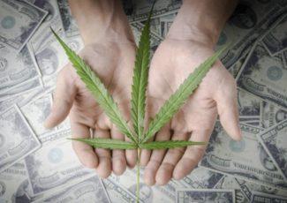 3 Top Marijuana Stocks to Buy (And 1 to Sell) – Investorplace.com