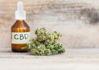 CBD Oil vs CBD Gummies for Anxiety – INQUIRER.net