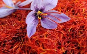 I'm Just Mad About Saffron (& other kitchen spices that activate the endocannabinoid system) – Project CBD