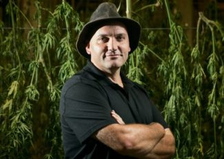 Intellectual property battle over cannabis products already being fought – Stuff.co.nz