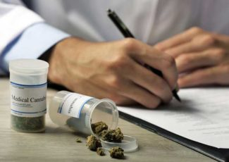 Medical marijuana use in workers comp looms: Panel – Business Insurance