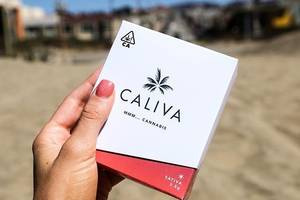 Zola and Caliva beverages with hemp-derived CBD to hit the market in late summer, early fall – FoodNavigator-USA.com