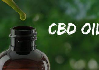 Cannabis4 days ago What are the main advantages of consuming CBD oil? – Cannabis Health Insider