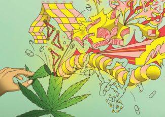 Not Everybody Must Get Stoned: Marijuana's Nonintoxicating Future – The Wall Street Journal