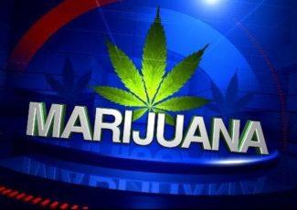 TSA updates 'medical marijuana' regulations to reflect FDA-approved drug containing cannabidiol – FOX 10 News Phoenix