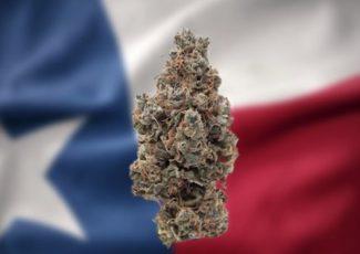 Cannabis for PTSD Patients Illegal in Texas – Cannabis Health Insider