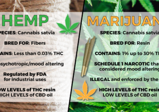 """Hemp and """"Weed"""": The difference – WJBF-TV"""