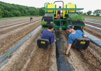 Hemp industry takes root across Driftless region | Tri-state News – telegraphherald.com