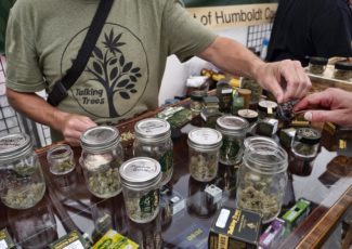 How to join the cannabis business boom – MetroWest Daily News
