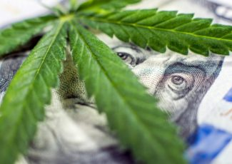 How to join the cannabis business boom – Newsday