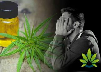 Is CBD Right For Me? Top Reasons Why Cannabidiol May Not Work for You – HealthMJ
