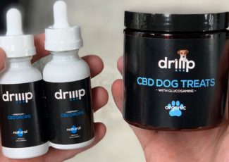 Teens from San Marcos launch CBD company with treats for dogs – fox5sandiego.com