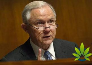 Texas Lawmaker Makes Unverified Suicide Statement on Marijuana and Military Veterans – TimesOfCBD