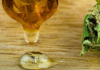 Best CBD Oil in Texas   Pros and Cons Of Local CBD Shops – INQUIRER.net