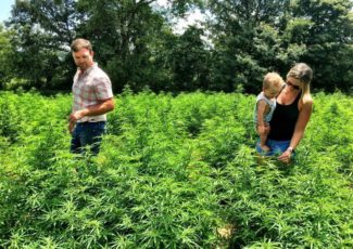 Budding Business: Hemp attracting new, generational growers | Agriculture – messenger-inquirer