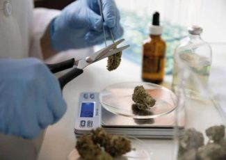 Cannabis-based health products are going mainstream – do they work? – New Scientist