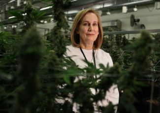 For physician, cancer battle inspired cannabis company – The Boston Globe