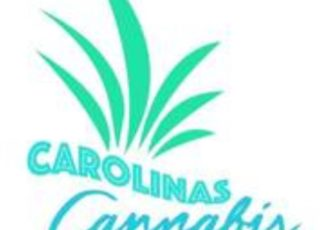 Kim DeLaney-Surratt brings 1st Cannabis Convention to Charlotte Next Weekend – EIN News