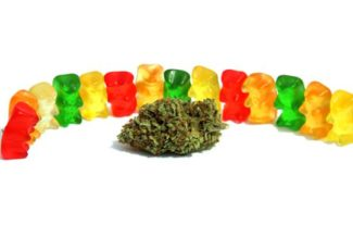 The Best CBD Gummy Bears of 2019   Top Ranked and Lab Tested – INQUIRER.net