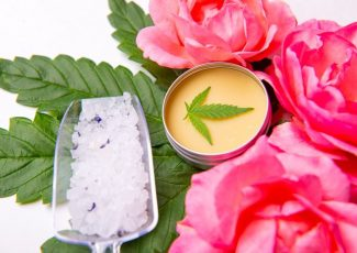 5 Fancy CBD-Infused Skincare Lines that Bring the Beauty – CBD Today